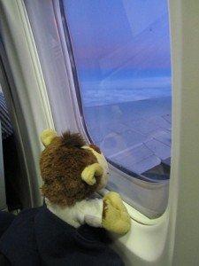 Buenos Aires - L'avion et l'arrivée dans Buenos Aires IMG_4263-225x300